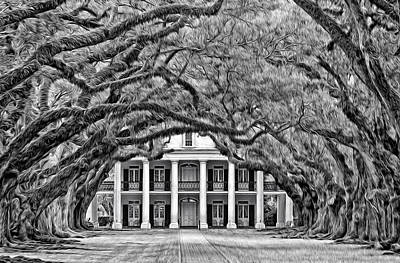 Oak Alley Photograph - Southern Class Oil Bw by Steve Harrington