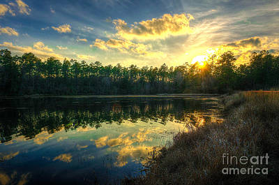 Photograph - Southern Creek by Maddalena McDonald