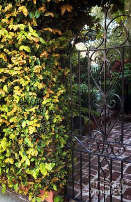 Photograph - Southern Entrance by John Rizzuto