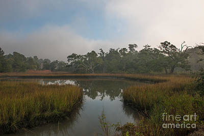 Photograph - Southern Fog by Dale Powell