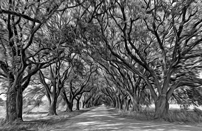 Overhang Digital Art - Southern Journey - Oil Bw by Steve Harrington