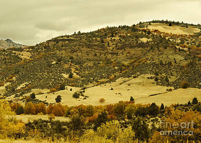 Photograph - Southern Oregon's Autumn Landscape by MaryJane Armstrong