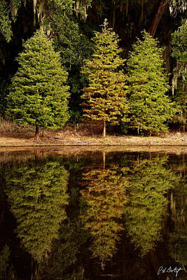 Southern Reflections Art Print by Phill Doherty