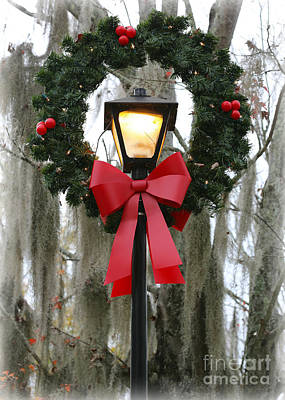 Of Lamps Photograph - Southern Seasons Greetings by Carol Groenen