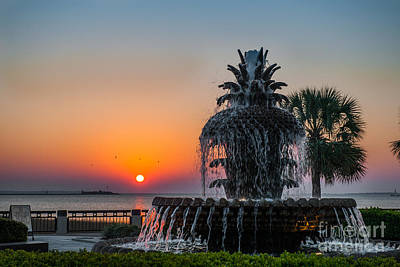 Photograph - Southern Sunrise by Dale Powell