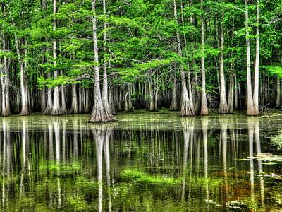 Surreal Photograph - Southern Swamp by Ester  Rogers