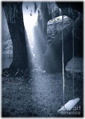 Photograph - Southern Swing by Carol Groenen