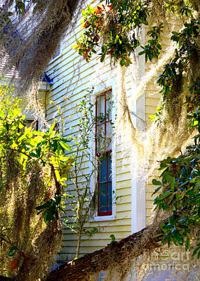 Photograph - Southern Window by Carol Groenen
