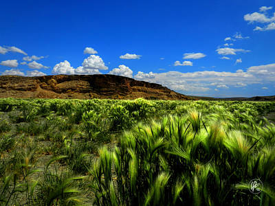 Photograph - Southern Wyoming 005 by Lance Vaughn