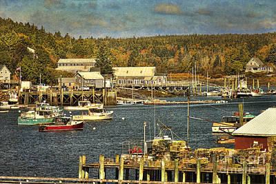 Southwest Harbor Art Print by Cindi Ressler