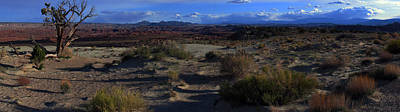 Photograph - Southwest Snake Canyon by Maria Arango Diener