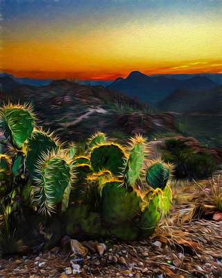 Photograph - Southwestern Dream by Chris Bordeleau