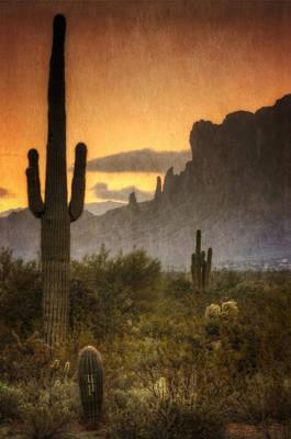 Southwestern Style  Art Print
