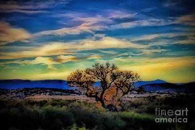 Photograph - Southwestern Sunset by Elizabeth Winter