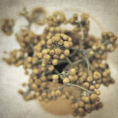 Impressionism Photos - Souvenirs de demain II by Zapista Zapista