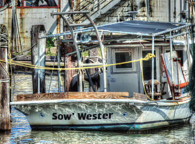 Photograph - Sow' Wester by Cathy Jourdan