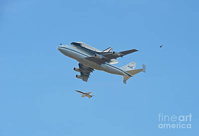 Photograph - Space Shuttle Endeavour Chase Plane And Hawk by David Zanzinger