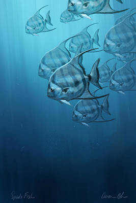 Animal Wall Art - Digital Art - Spade Fish by Aaron Blaise