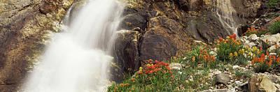 Spalding Falls Grand Teton National Art Print