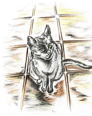 Spanish Cat Waiting Art Print
