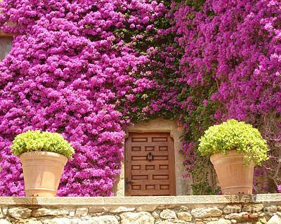 Photograph - Spanish Door With Bougainvillea by Carol Groenen