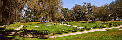 Spanish Moss Covered Trees In A Garden Art Print by Panoramic Images