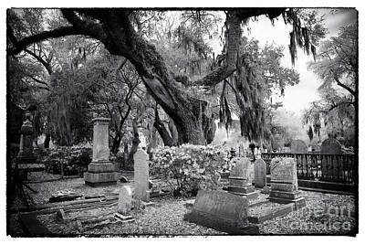 Spanish Moss In The Cemetery Art Print by John Rizzuto