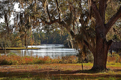 Digital Art - Spanish Moss On The Bon Secour River Final by Michael Thomas
