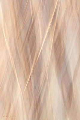 Icm Photograph - Insight by Robin Konarz