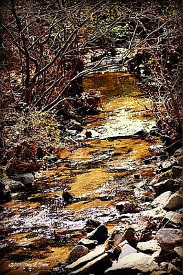 Art Print featuring the photograph Sparkling Creek by Tara Potts