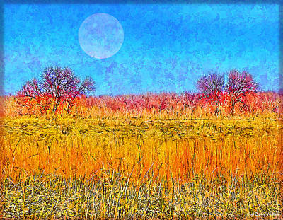 Art Print featuring the digital art Moonlight Over Fields Of Gold - Boulder County Colorado by Joel Bruce Wallach