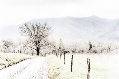 Cades Cove Painting - Sparks Lane by Lynne Jenkins