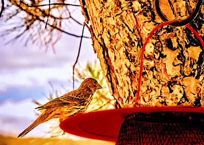 Painting - Sparrow Pine Tree Feeder by Bob and Nadine Johnston
