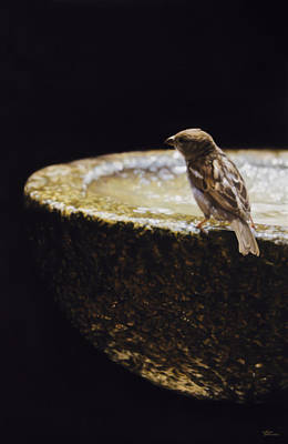 Sparrow With Fountain Art Print by Alberto Ponno