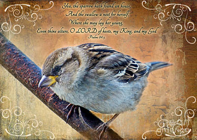 Sparrow With Verse Art Print by Debbie Portwood