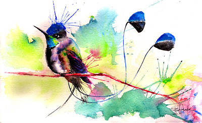 Tribute Drawing - Spatuletail Hummingbird by Isabel Salvador