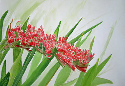 Painting - Spear Lily by Elvira Ingram
