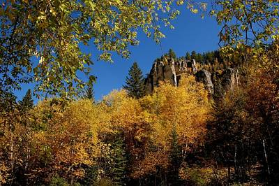 Photograph - Spearfish Canyon In Autumn Color by Dakota Light Photography By Dakota