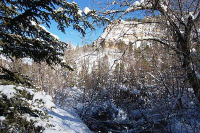 Photograph - Spearfish Canyon In Snow by Dakota Light Photography By Dakota