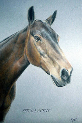 Art Print featuring the painting Special Agent by Rosemary Colyer