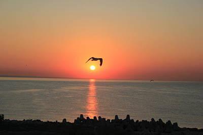 Peisaj Photograph - Special Sunrise by Gavenea Gheorghe Sorin
