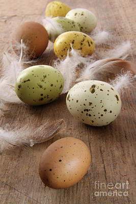 Speckled Easter Eggs  On Wooden Table  Art Print by Sandra Cunningham