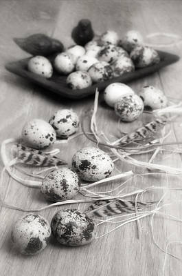 Quail Photograph - Speckled Quail Eggs by Amanda Elwell