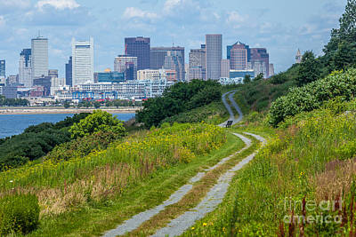 Photograph - Spectacle Island View Of Boston by Susan Cole Kelly