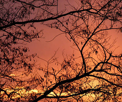 Spectacular Sky And Silhouettes Art Print by Will Borden