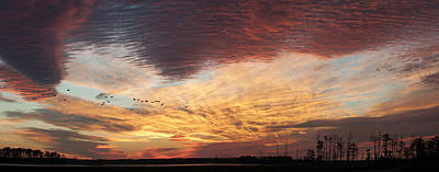 Photograph - Spectacular Sunset At Blackwater National Wildlife Refuge by Lauren Brice