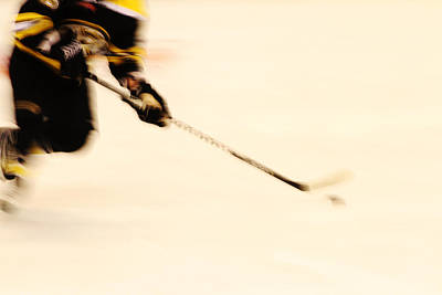 Photograph - Speed On The Ice by Karol Livote