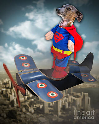 Digital Art - Speedolini Flying High by Kathy Tarochione