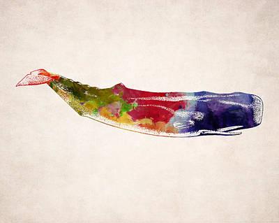 Sperm Digital Art - Sperm Whale Illustration Design by World Art Prints And Designs