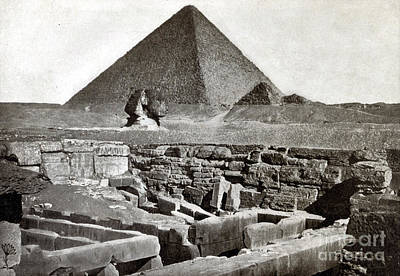Photograph - Sphinx And The Great Pyramid, 1887 by Science Source